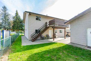 Photo 4: 20557 114 Avenue in Maple Ridge: Southwest Maple Ridge House for sale : MLS®# R2365484