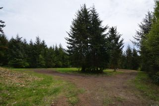 Photo 21:  in : Sk French Beach Land for sale (Sooke)  : MLS®# 875094