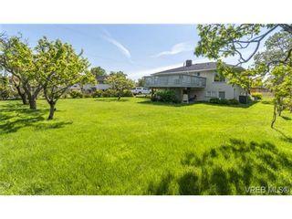 Photo 8: 2090 Allenby St in VICTORIA: OB Henderson House for sale (Oak Bay)  : MLS®# 700199