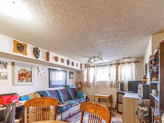 Photo 21: 2403 43 Street SE in Calgary: Forest Lawn Duplex for sale : MLS®# A1082669