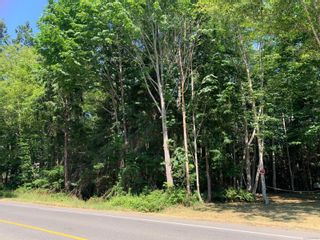 Photo 3: 16&17 Miracle Beach Dr in : CV Merville Black Creek Land for sale (Comox Valley)  : MLS®# 881865