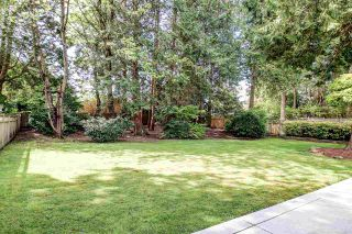 Photo 9: 5166 8A Avenue in Delta: Tsawwassen Central House for sale (Tsawwassen)  : MLS®# R2574199