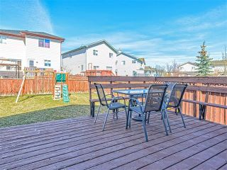 Photo 16: 65 HARVEST CREEK Close NE in Calgary: Harvest Hills House for sale : MLS®# C4059402