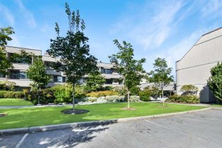 "Photo 30: 312 15313 19 Avenue in Surrey: King George Corridor Condo for sale in ""Village Terrace"" (South Surrey White Rock)  : MLS®# R2494075"