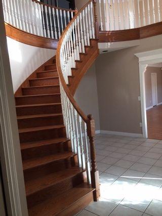 Photo 2: 20123 PATTERSON Avenue in Maple Ridge: Southwest Maple Ridge House for sale : MLS®# R2414530