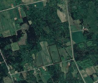 Photo 3: LOT Hall Road in Burlington: 404-Kings County Vacant Land for sale (Annapolis Valley)  : MLS®# 202107216