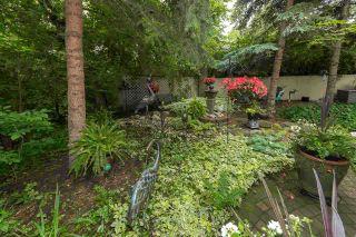 Photo 25:  in Edmonton: Zone 07 House Half Duplex for sale : MLS®# E4233211