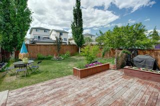 Photo 31: 445 Bridlewood Court SW in Calgary: Bridlewood Detached for sale : MLS®# A1121282