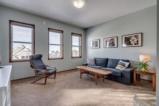 Photo 27: 119 ELGIN MEADOWS Way SE in Calgary: McKenzie Towne Detached for sale : MLS®# A1067731
