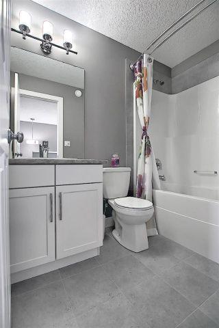 Photo 41: 3 ROBERGE Close: St. Albert House Half Duplex for sale : MLS®# E4241918