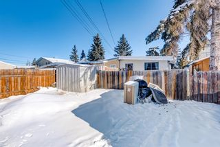 Photo 29: 2015 40 Street SE in Calgary: Forest Lawn Semi Detached for sale : MLS®# A1068609