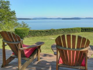 Photo 47: 6749 Welch Rd in : CS Martindale House for sale (Central Saanich)  : MLS®# 875502