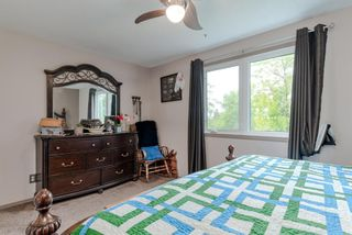 Photo 12: 123 Erin Woods Drive SE in Calgary: Erin Woods Detached for sale : MLS®# A1117498