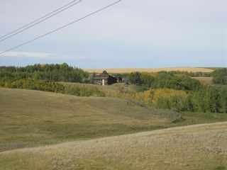 Photo 3: 242042 Township RD 264: Rural Wheatland County Detached for sale : MLS®# C4272839