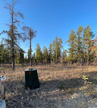 Photo 5: Over one acre lots in Hudson Bay: Lot/Land for sale : MLS®# SK850478