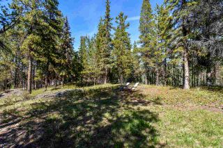 Photo 8: 3205 MILLAR Road in Smithers: Smithers - Rural House for sale (Smithers And Area (Zone 54))  : MLS®# R2475972