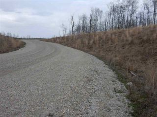 Photo 13: TWP ROAD 492 RANGE ROAD 234: Rural Leduc County Rural Land/Vacant Lot for sale : MLS®# E4218784