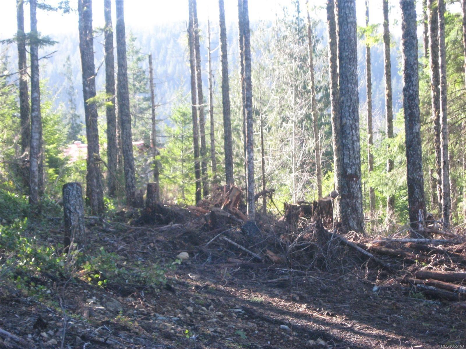 Photo 7: Photos: 1230 Cottonwood Rd in : NI Kelsey Bay/Sayward Land for sale (North Island)  : MLS®# 865463