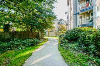 """Photo 28: 109 8115 121A Street in Surrey: Queen Mary Park Surrey Condo for sale in """"THE CROSSING"""" : MLS®# R2505328"""