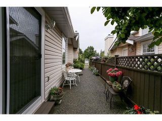 """Photo 19: 33 9168 FLEETWOOD Way in Surrey: Fleetwood Tynehead Townhouse for sale in """"The Fountains"""" : MLS®# F1414728"""