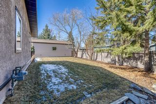 Photo 41: 10540 Waneta Crescent SE in Calgary: Willow Park Detached for sale : MLS®# A1085862