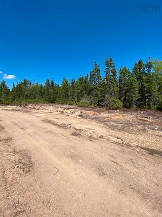 Photo 9: Lot 3 36056 Cabot Trail in Ingonish: 209-Victoria County / Baddeck Vacant Land for sale (Cape Breton)  : MLS®# 202119813