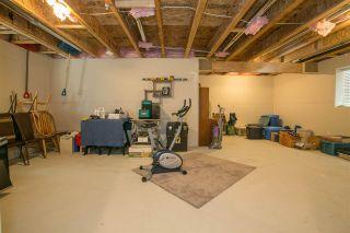 Photo 18: 11060 BUCKERFIELD Drive in Maple Ridge: Cottonwood MR House for sale : MLS®# R2291980