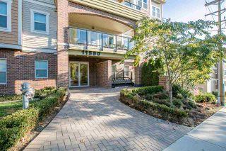 "Photo 1: 206 11580 223 Street in Maple Ridge: West Central Condo for sale in ""RIVER'S EDGE"" : MLS®# R2220633"
