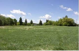 Photo 19: 157138 Road 98N Road in Birtle: Farm for sale (R32 - Yellowhead)  : MLS®# 202000292