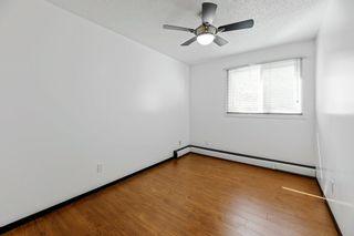 Photo 14: 16 10931 83 Street in Edmonton: Zone 09 Condo for sale : MLS®# E4238711