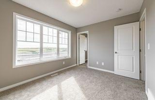Photo 20: 20315 16 Avenue in Edmonton: Zone 57 Attached Home for sale : MLS®# E4220855