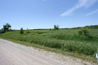 Photo 8: Lt 17 Centennial Park Road in Kawartha Lakes: Rural Eldon Property for sale : MLS®# X4795681