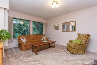 Photo 10: 8679 Forest Park Dr in NORTH SAANICH: NS Dean Park House for sale (North Saanich)  : MLS®# 772597