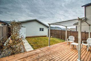 Photo 25: 232 Silverado Range Close SW in Calgary: Silverado Detached for sale : MLS®# A1047985