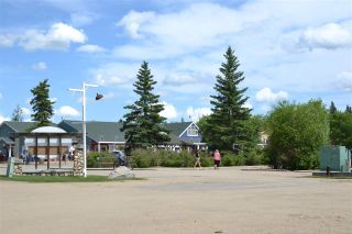 Photo 50: 143 CRYSTAL SPRINGS Drive: Rural Wetaskiwin County House for sale : MLS®# E4221264