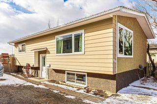 Photo 22: 420 SPRING HAVEN Court SE: Airdrie Detached for sale : MLS®# C4289302