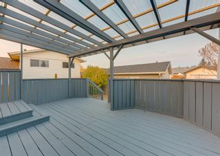 Photo 40: 205 RUNDLESON Place NE in Calgary: Rundle Detached for sale : MLS®# A1153804