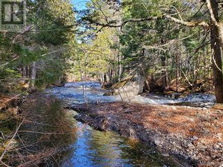 Photo 1: - Route 755 in Tower Hill: Vacant Land for sale : MLS®# NB055567