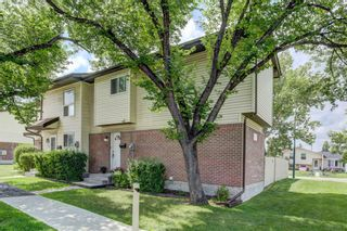 Photo 29: 74 32 WHITNEL Court NE in Calgary: Whitehorn Row/Townhouse for sale : MLS®# A1016839