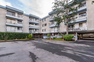Photo 4: 203 6420 BUSWELL Street in Richmond: Brighouse Condo for sale : MLS®# R2137140