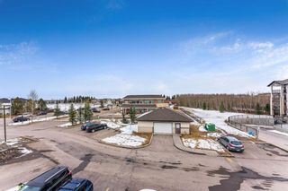 Photo 24: 1307 16969 24 Street SW in Calgary: Bridlewood Apartment for sale : MLS®# A1084579