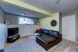 Photo 28: 12 Willowbrook Crescent: St. Albert House for sale : MLS®# E4264517