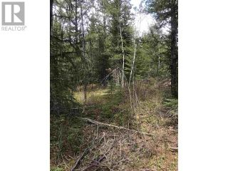 Photo 2: LOT 12 CHIEF LAKE ROAD in Prince George: Vacant Land for sale : MLS®# R2531443