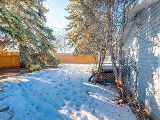 Photo 49: 407 49 Avenue SW in Calgary: Elboya Detached for sale : MLS®# A1060455
