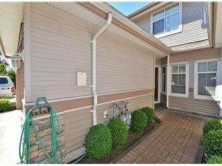 """Photo 18: 50 11860 RIVER Road in Surrey: Royal Heights Townhouse for sale in """"Cypress Ridge"""" (North Surrey)  : MLS®# F1417810"""