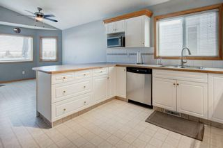 Photo 6: 66 Jensen Heights Place NE: Airdrie Detached for sale : MLS®# A1065376