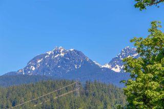 "Photo 5: 22822 136 Avenue in Maple Ridge: Silver Valley House for sale in ""NELSON PEAK"" : MLS®# R2590307"