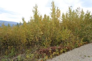 Photo 10: Lot 81 Sunset Drive: Eagle Bay Land Only for sale (Shuswap)  : MLS®# 10186644