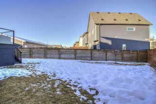 Photo 34: 27 Walden Mount SE in Calgary: Walden Detached for sale : MLS®# A1061206