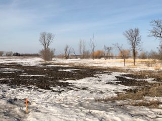 Photo 12: 0 53N Road: RM Tache Vacant Land for sale (R05)  : MLS®# 202109286